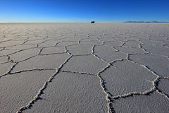 Van on Salar de Uyuni, salt lake, Bolivia. Van on Salar de Uyuni, salt lake, is largest salt flat in the world, altiplano, Bolivia, South America Stock Photos