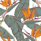 Van Surf Illustration, gráficos de la camiseta, vectores Foto de archivo libre de regalías