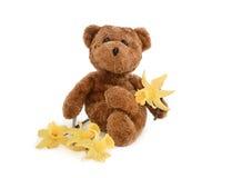 Van Teddy en de gele narcis-Lente Concept. Stock Fotografie