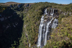 Van Tigrepreto (Zwarte Tijger) de Waterval - Serra Geral National Park Stock Foto's
