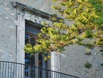 Van vensterbalkon en takken details Royalty-vrije Stock Fotografie