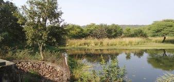 Van Vihar Bhopal zdjęcia royalty free