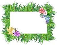 Van waterverf tropische bladeren en bloemen kroon! Waterverf exotische bloemenkaart Hand geschilderd tropisch kader met palmblade stock illustratie
