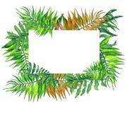 Van waterverf tropische bladeren en bloemen kroon! Waterverf exotische bloemenkaart Hand geschilderd tropisch kader met palmblade royalty-vrije illustratie