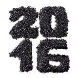 2016 van zwarte kaviaar Royalty-vrije Stock Afbeeldingen