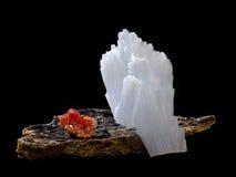 Vanadinite och Anhydrite på glimmer Arkivfoto
