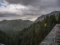 Vance Creek Bridge fotografie stock