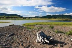 Vanchin Fluss 14 (Gold) Lizenzfreie Stockfotos