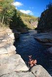 Vanchin Fluss 7 Stockbilder