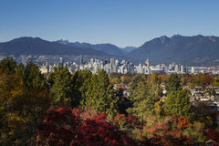 Vancouver Autumn royalty free stock image