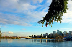 Vancouver Bay. A view of Vancouver Bay Royalty Free Stock Photo