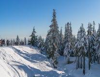 Vancouver BC Canada, 5,2017 December de meningen van de de wintersneeuw bij piek van Hoenberg, Vancouver Canada Stock Afbeelding