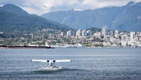 VANCOUVER, BC, CANADA - JUNE 06, 2016: Harbour Air Dehavilland Otters in Vancouver`s Coal Harbour. VANCOUVER, BC, CANADA - JUNE 06, 2016: Harbour Air stock photos