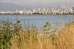 Vancouver BC Downtown from Hasting Mills Park Royalty Free Stock Images