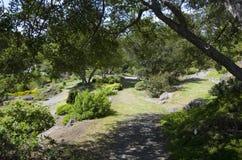 Vancouver Botanical Garden Stock Photography