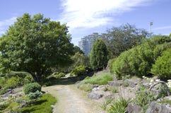 Vancouver botanisk trädgård på universitetet av British Columbia Arkivfoton