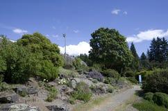 Vancouver botanisk trädgård på universitetet av British Columbia Arkivbilder