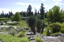 Vancouver botanisk trädgård på universitetet av British Columbia Royaltyfri Foto