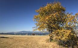 Vancouver British Columbia, Kanada Arkivfoto