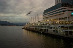 Vancouver, British Columbia's Canada Place at dusk. An evening shot of Vancouver, British Columbia's Canada Place and Coal Harbour, with a bird flying past Stock Photography