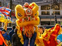 VANCOUVER, CANADÁ - 18 de febrero de 2014: La gente en Lion Costume amarillo en el Año Nuevo chino desfila en Vancouver Chinatown Fotos de archivo libres de regalías