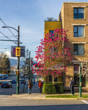 Vancouver, Canadá - 17 de marzo de 2016 Calle de la ciudad en la primavera Fotografía de archivo