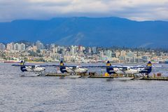De Havilland Beaver sea planes docked at Harbour Airport at Coal royalty free stock photography
