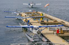 De Havilland Beaver sea planes docked at Harbour Airport at Coal royalty free stock images