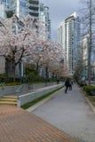 Vancouver, Canada - 23 mars 2016 Images libres de droits