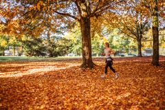 Vancouver Canada - October 29, 2017 Sporty young woman running in the autumn yellow park in the morning. Vancouver Canada - October 29, 2017 Sporty young woman Royalty Free Stock Photography