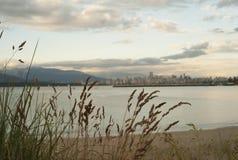 Vancouver Cityscape från den Kitsilano stranden Arkivfoto