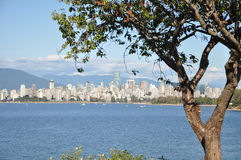 Vancouver Cityscape. Vancouver Skyline seen from Kitsilano Royalty Free Stock Image