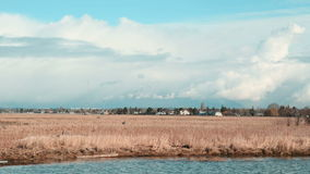 Vancouver Coast Mountain Range Timelapse. A timelapse view across the marshes of Richmond towards Vancouver, and the snow capped British Columbia Coast Mountains stock video footage
