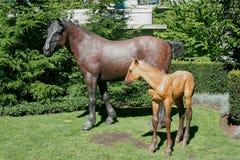 VANCOUVER, COLUMBIA/CANADA BRITÁNICO - 14 DE AGOSTO: Estatuas h del caballo fotografía de archivo