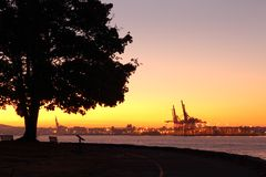 Vancouver Dawn, Stanley Park Stock Photography