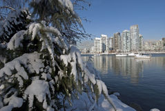 Vancouver in de winter Royalty-vrije Stock Fotografie