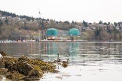 VANCOUVER DEL NORTE, A.C., CANADÁ - ABRIL, 09, 2018: El buque de petróleo cerca del Parkland aprovisiona de combustible la refine fotografía de archivo libre de regalías