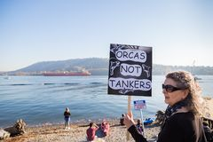 VANCOUVER DEL NORTE, A.C., CANADÁ - 28 DE OCTUBRE DE 2017: Manifestante en el parque de Cates que se reúne contra la tubería de K imagenes de archivo