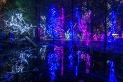VANCOUVER DEL NORTE, CANADÁ - 27 de enero de 2018: La decoración de la iluminación del Año Nuevo y de la Navidad en Capilano tien Fotografía de archivo libre de regalías
