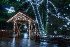 VANCOUVER DU NORD, CANADA - 27 janvier 2018 : La décoration d'éclairage de nouvelle année et de Noël chez Capilano jettent un pon Image stock