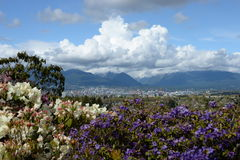 Vancouver im Frühjahr lizenzfreie stockfotografie