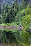 Vancouver Island Canada Royalty Free Stock Images