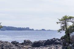 Vancouver Island west coast Royalty Free Stock Photo