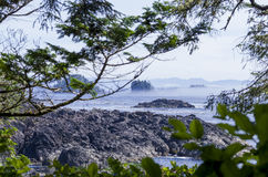 Vancouver Island west coast Royalty Free Stock Image