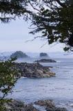 Vancouver Island west coast Royalty Free Stock Photos