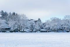 VANCOUVER KANADA, Luty, - 24, 2018: Zima ranek po nocy śnieżna miecielica przy Douglas parkiem Fotografia Royalty Free