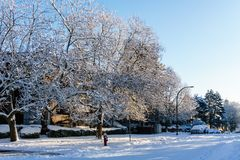 VANCOUVER KANADA, Luty, - 24, 2018: Zima ranek po nocy śnieżnej miecielicy Zachodnia 14th aleja Obrazy Royalty Free