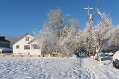 VANCOUVER KANADA, Luty, - 24, 2018: Zima ranek po nocy śnieżnej miecielicy Zachodnia 14th aleja Obraz Royalty Free