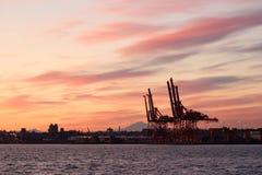 Vancouver-Ladung-Kräne am Sonnenaufgang lizenzfreies stockbild