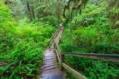 Vancouver las Obrazy Stock